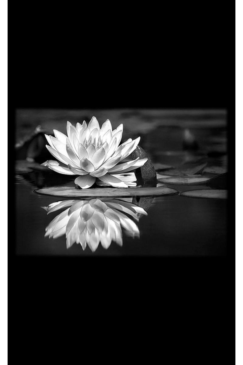 Цветы на памятник 158