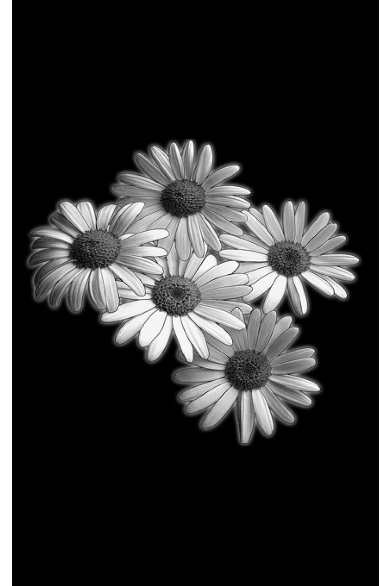 Цветы на памятник 275