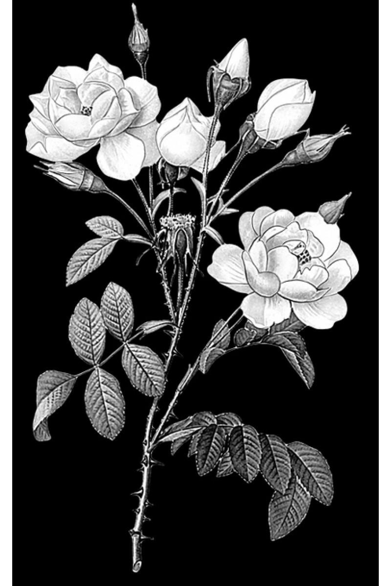 Цветы на памятник 407