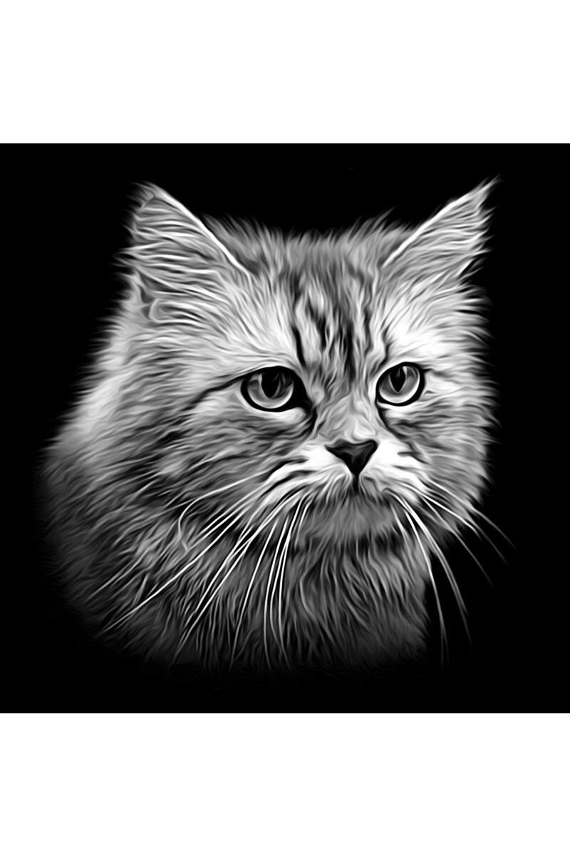 Портрет питомцу